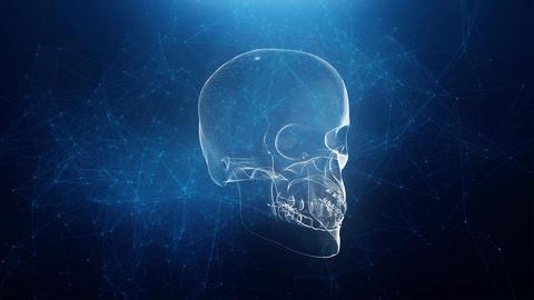 Abstract skull animation with blue plexus background CG動画