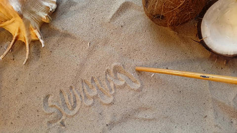 writes the word summer, on the sand of the beach with a seashell and a coconut Acción en vivo