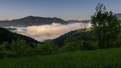Sunrise morning fog in spring time lapse. Dolly shot over green meadow Footage