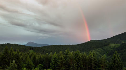 Rainbow over forest time lapse. Sky after rain Footage