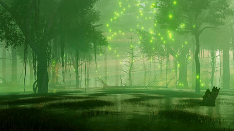Night forest swamp with magical firefly lights 애니메이션