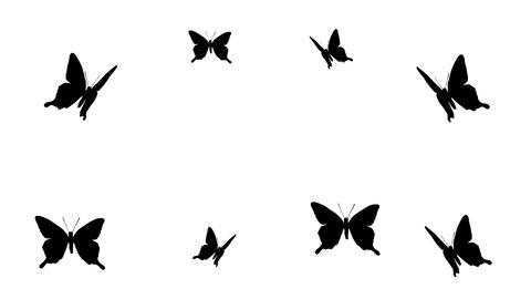 舞い散る蝶のエフェクトGB CG動画