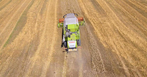 Aerial drone shot of a combine harvester working in a wheat field Footage