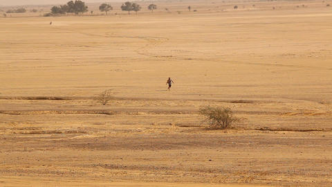 Desert Landscape in Rajasthan India Footage