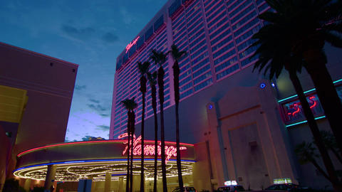 Establishing shot of the flamingo hotel with neon lights and palm trees Footage