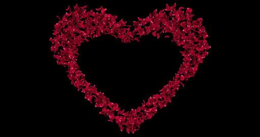 Red Rose Flower Petals In Heart Shape Alpha Matte Placeholder Loop 4k Animation