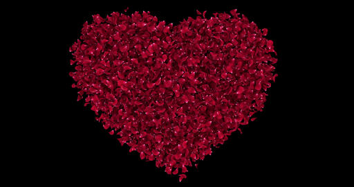 Romantic Red Rose Flower Petals In Heart Shape Alpha…, Stock Animation