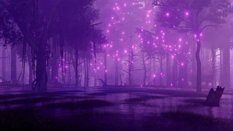 Fairy firefly lights in marshy night forest CG動画素材