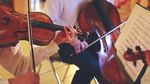 Classical Musicians Footage