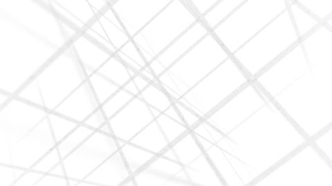 Grid Backdrop White Animation