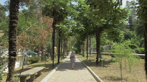 Young girl walking along the palm alley. Batumi botanical garden, Georgia Footage