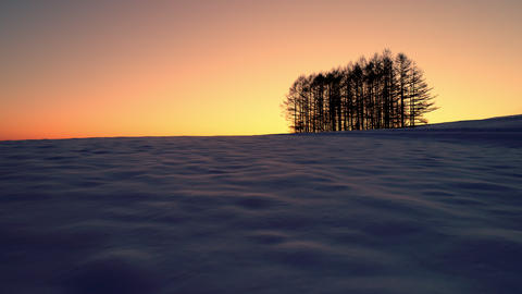 Aerial - Dawn's snowy field and distant trees 영상물