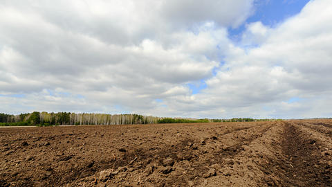 Plowed field after planting potatoes. Time Lapse Footage