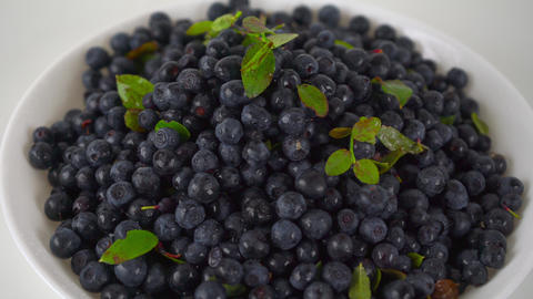 Pile of wet bilberries with leaves on a plate 4K close up ProRes dolly video Footage