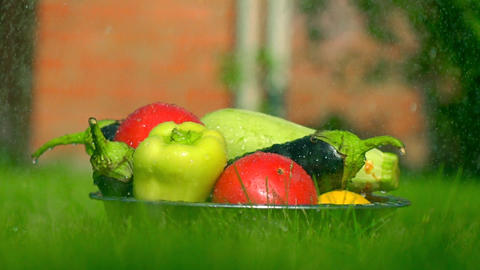 Different vegetables in the grass and falling water drops, super slow motion Footage