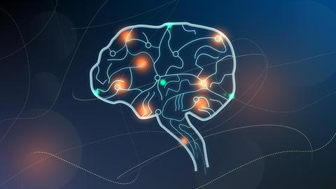Human brain nodes, neuron system Animation