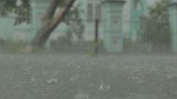 rain puddles, raindrops Footage