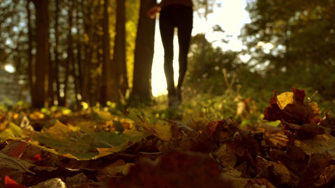 Blurred female running on fallen autumn leaves in sunny forest. Blazing sun Live Action