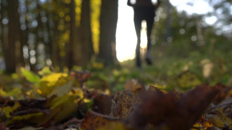 Blurred girl running on fallen leaves in sunny autumn forest. Blazing sun. Super Live Action