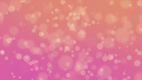 Orange pink bokeh background Animation