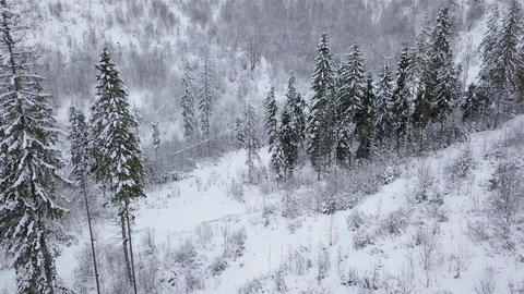 Aerial view of ski resort - ski lift and snow-covered coniferous forest Footage