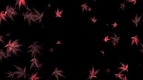Autumn leaves diffuse leaf CG autumn Animation