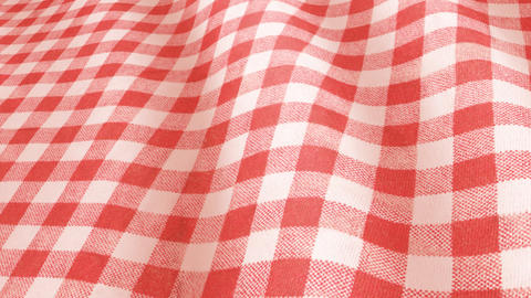 20180108 cloth gingham colorA PJ Animation