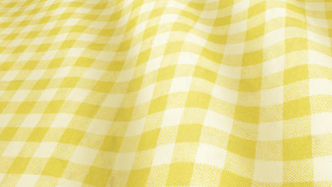20180108 cloth gingham colorC PJ Animation