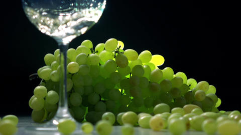 Pouring white wine into glass against the bunch of green grapes. Winemaking Footage