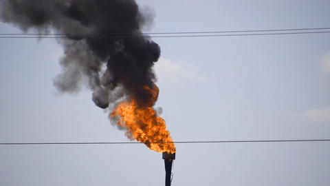 The smoking gas torch. Environmental pollution. Torch system on an oil field Live Action