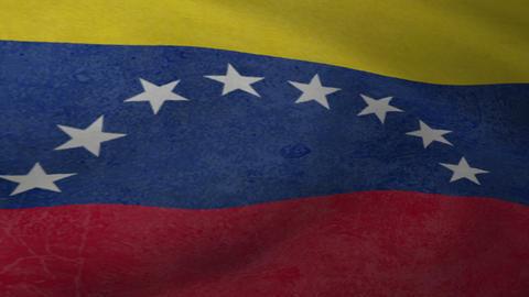 Venezuela Flag Loop Animation