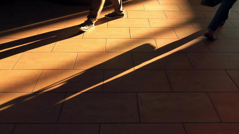 Feet walking on brown sunlit floor. 4K shot Footage