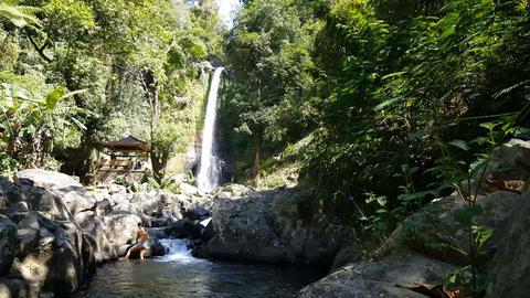 Woman in bikini at The waterfall of Gitgit, Bali, Indonesia Footage