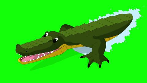 Crocodile Attacks Front View Chroma Animation