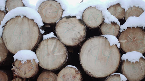 Stack of timber covered in snow on winter day Live Action