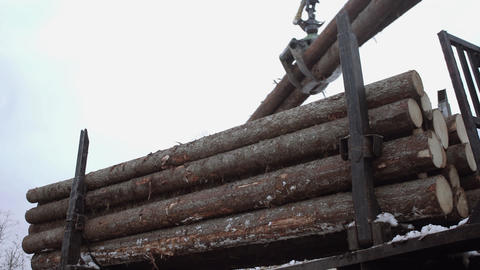 Crane claw picks up wood logs from truck at sawmill Live Action