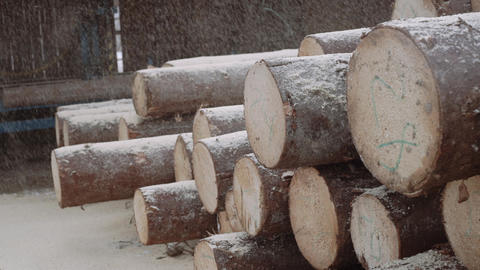Sawdust fall on timber logs pile with numbers markers at sawmill Footage