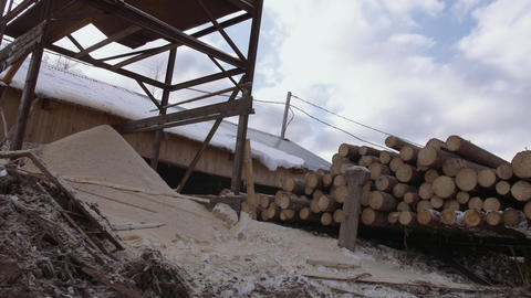 Sawdust pile on wood logs stack with markers at sawmill Footage