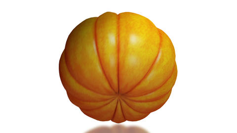 Pumpkin, seamless loop on white background Animation