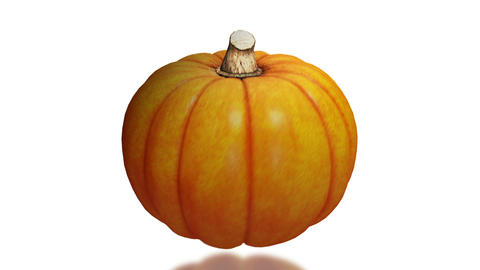 Pumpkin, seamless loop on white background Stock Video Footage