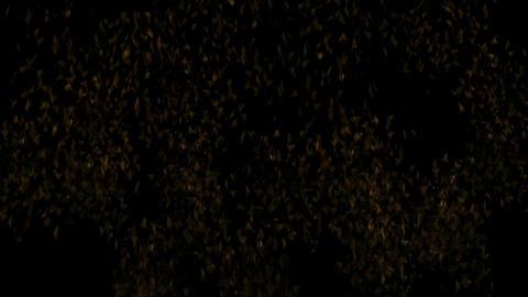 Gareki 2349 Stock Video Footage