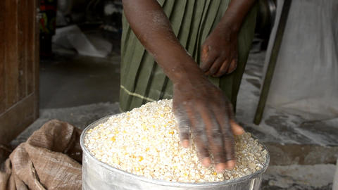 African faremes Stock Video Footage