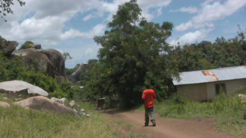 Africa Stock Video Footage