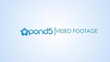 Elegant Logo Opener stock footage