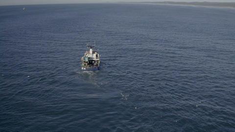 A blue boat sailing through the big blue sea Footage