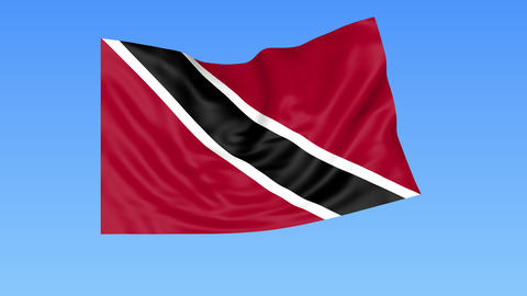 Waving flag of Trinidad and Tobago, seamless loop. Exact size, blue background Footage