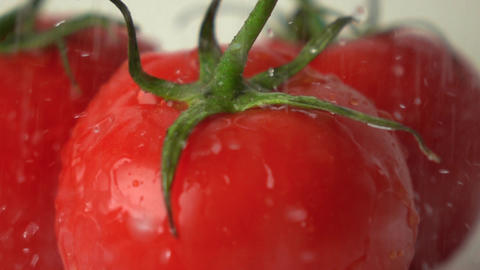 Pouring water over red ripe tomatoes with green leaves super slow motion shot Footage