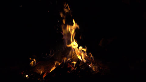 4K shot of a bonfire in the dark. Tossing firewood Footage