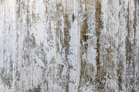 Gray old grunge textured wooden background フォト