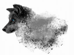 Wolf disintegration Photo